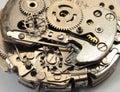 Machinery Macro Detail