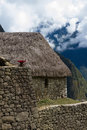 Machu Picchu grass roof stone bldg Royalty Free Stock Photo