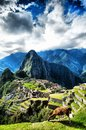 Machu picchu lama guanaco in front of peru Stock Photos