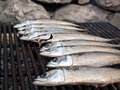 Mackarel fish on grill Royalty Free Stock Photos