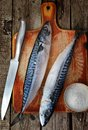 Mackerel raw salt and knife Stock Image