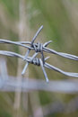 Macro of  barbed wire Royalty Free Stock Photo