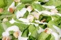 Macro cesar salad Royalty Free Stock Photography