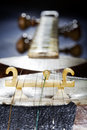 Macro close up bridge persian tar musical string instrument rest instrument blurred background tar long necked waisted lute Stock Images