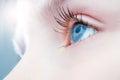 Macro close up of human eye. Royalty Free Stock Photo