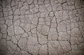 Macro closeup on concrete asphalt cracks the road Stock Image