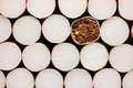 Macro Closeup Filter Cigarettes Stock Photography