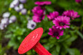 Macro closeup of sprinkler head of watering can in garden Royalty Free Stock Photo