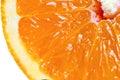 Macro detailed view of sliced orange fruit Stock Photography