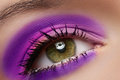 Macro of female eye with violet fashion make-up Royalty Free Stock Photography