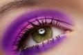 Macro of female eye with violet fashion make-up Royalty Free Stock Photo