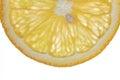 Macro food collection orange slice on white background Royalty Free Stock Image