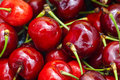 Macro fresh red cherries with stems Royalty Free Stock Photo