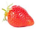 Macro of fresh ripe strawberry on white Royalty Free Stock Photo