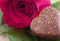 Macro image of pink rose and chocolate heart candy. Royalty Free Stock Photo
