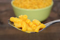 Macro macaroni and cheese on a fork Royalty Free Stock Photo