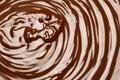 Macro of Melted milk or dark chocolate swirl background Royalty Free Stock Photo