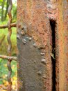 Macro photo of rusty metal, allowing to assess the level of wear of the iron object