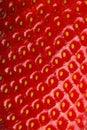 Macro photo of strawberry texture Royalty Free Stock Photo