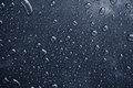 Macro Of Raindrops