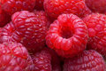 Macro of raspberries Royalty Free Stock Photo