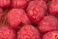 Macro of ripe raspberries Royalty Free Stock Photo