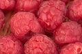 Macro of ripe raspberries Royalty Free Stock Photo