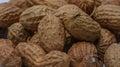 Macro roasted peanuts Royalty Free Stock Photo