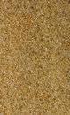 Macro of sand texture Royalty Free Stock Photo