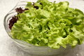Macro shot green hydroponically lettuce leaves in glass bolwe Royalty Free Stock Photo