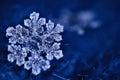 Macro snowflake crystal Royalty Free Stock Photo