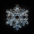 Macro snowflake ice crystals Royalty Free Stock Photo