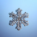 Macro snowflake ice crystals present natural Royalty Free Stock Photo