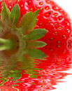 Macro of strawberry Royalty Free Stock Photos
