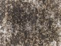 Macro texture - concrete - discolored pavement Royalty Free Stock Photo