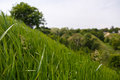 Macro view of green grass with blured landscape of green hills or mountains on the background Royalty Free Stock Photo