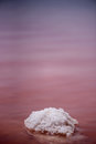 Macro View of the salt rock in red waved water Salinas Torrevieja Spain Sunny day with reflective surface Royalty Free Stock Photo