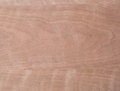 Macro of wood veneer abstract showing the detail the grain Royalty Free Stock Photo