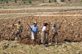 Madagascar october people at work small agricultural village in land tilling preparation for plantation Royalty Free Stock Photography