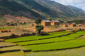 Madagascar small agricultural village in Royalty Free Stock Photos
