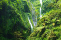 Madakaripura waterfall – deep forest in east java indonesia Stock Images