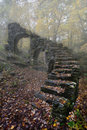 Madame Sherri Castle Ruins in Autumn fog Royalty Free Stock Photo