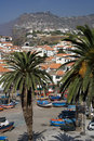 Madeira - Camara de Lobos Royalty Free Stock Photo