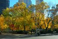 Madison square park during fall season trees with beautiful yellow and orange leaves the at in new york city the is at the Stock Photo