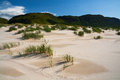 Maghara strand ireland sand dunes on in donegal Royalty Free Stock Photo