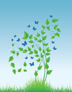 Magic flower with butterflies Royalty Free Stock Photo