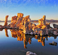 The magic of Mono Lake Royalty Free Stock Photo
