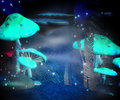 Magic mushrooms night backdrop blue Royalty Free Stock Images
