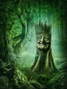 Magic stump with a face in the wood Royalty Free Stock Image