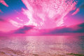 Magic sunrise rose over sea Royalty Free Stock Photo